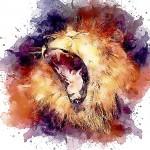 lion-3522954_1920
