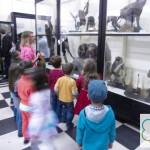 Ателие в Национален природонаучен музей