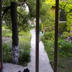 Дворът от залата