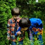 kids-4364121_1920